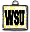 Wichita State University Established